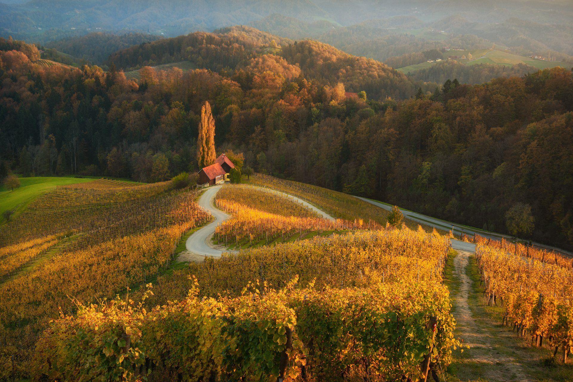 Осень в Словении... Краси Матаров