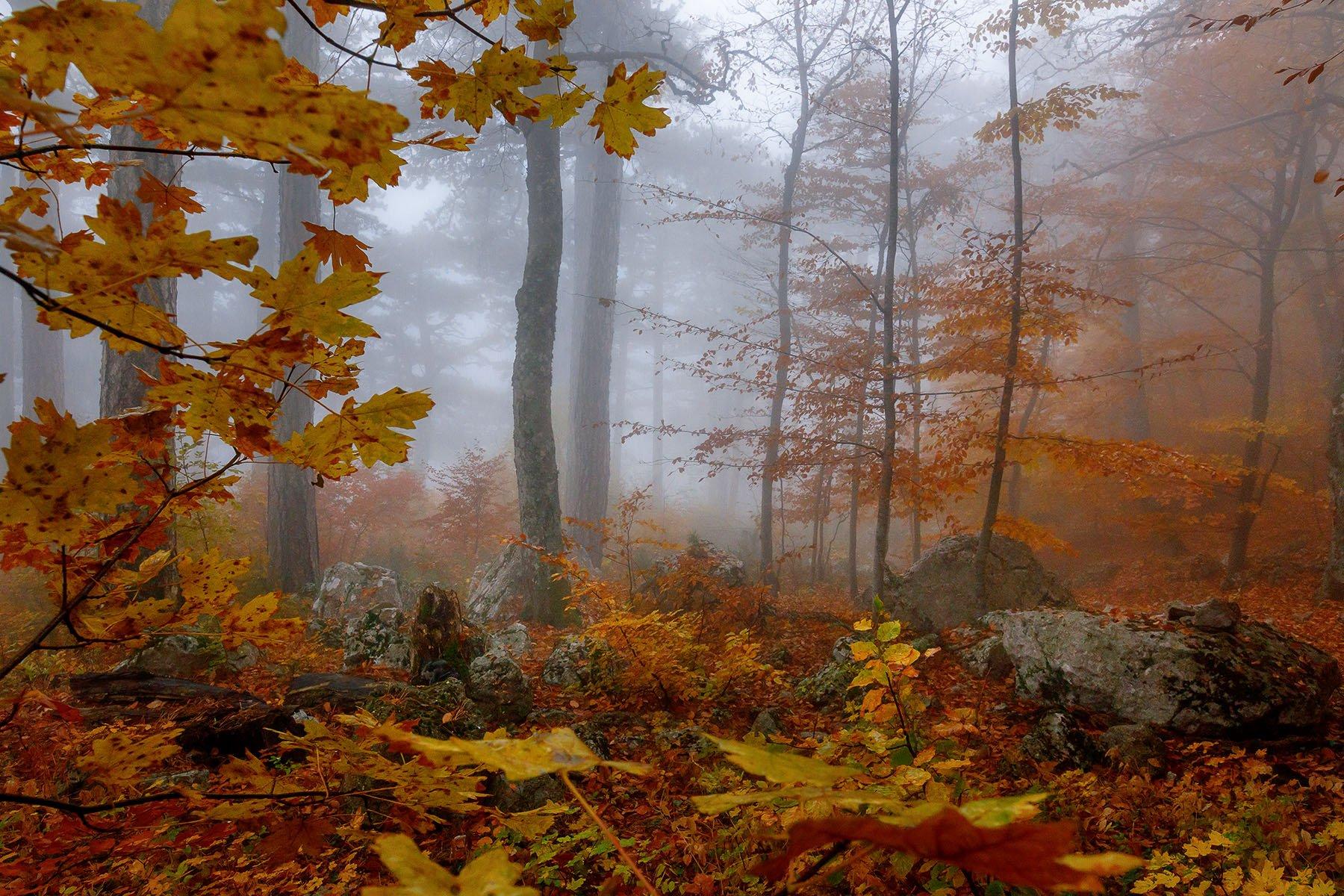 Осень в Крыму Костенко Александр