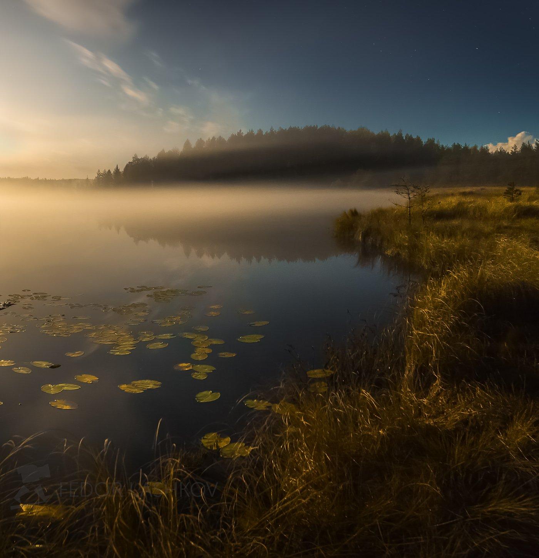 ночь, ленинградская область, осень, полнолунье, луна, сосны, озеро, туман, облака, ночью, ночь, ярко, свет,, Лашков Фёдор
