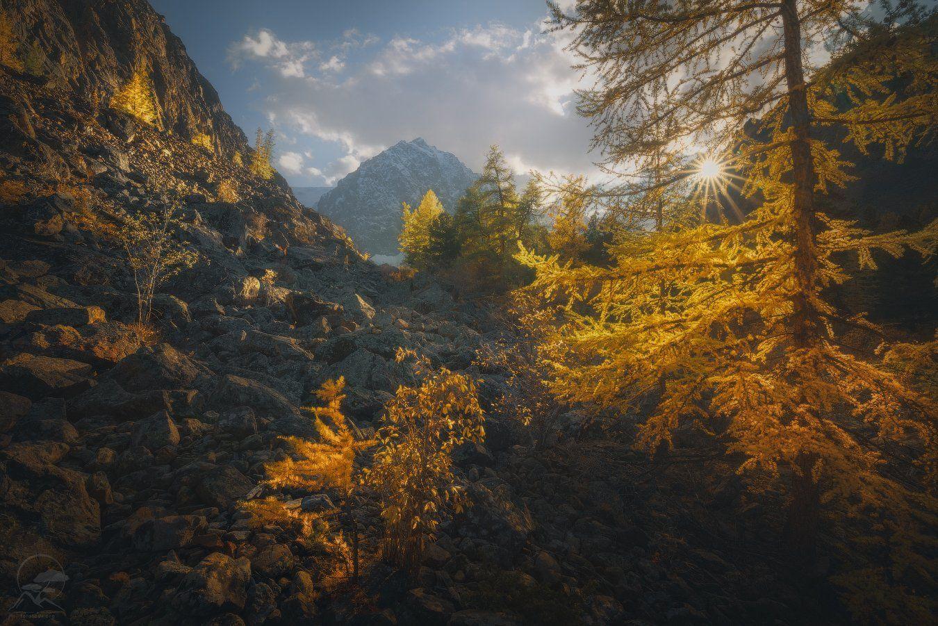 пейзаж, природа, горы, алтай, актру, Гордиенко Анатолий