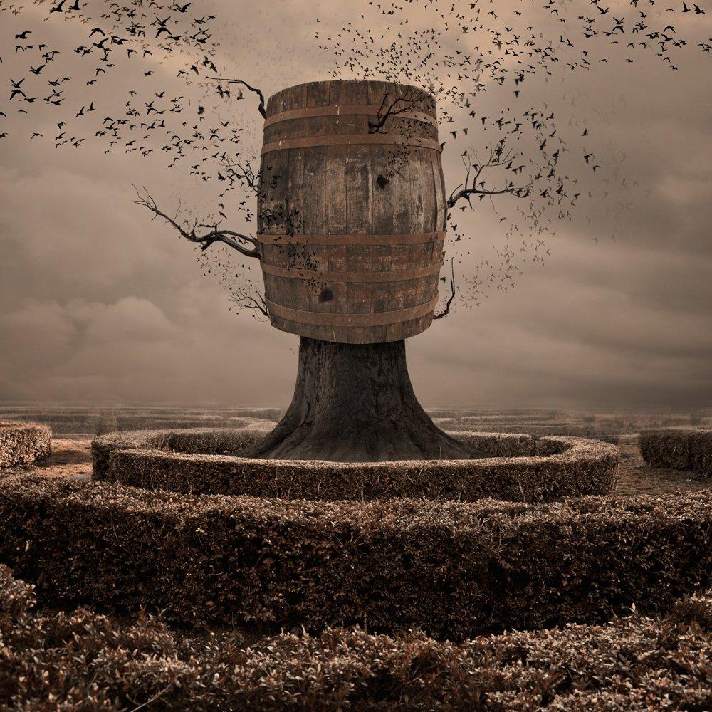 sky, birds, clouds, tree, bush, grass, fly, wood, mystery, manipulation, photoshop, nest, flying, beast, drum, caras ionut, tutorial, Caras Ionut