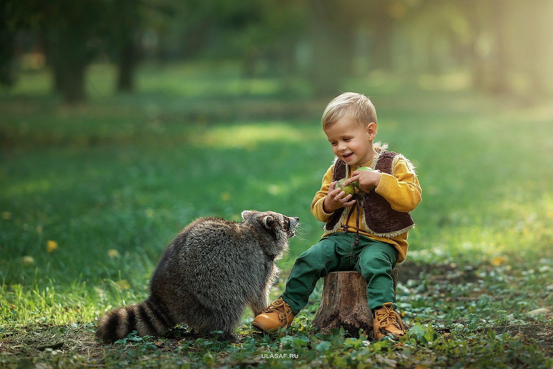 art photo, art, портрет, осень, sunset, закат, autumn, ребенок, дети, прогулка, мальчик, boy, животное, енот, raccoon, радость, малыш, друзья, happy, любовь, love, 105mm, kid, children, beautiful, Юлия Сафо