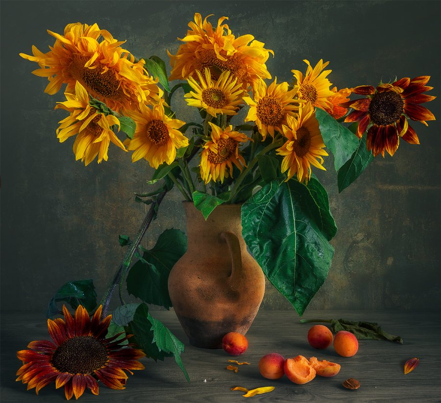 still life, натюрморт,    винтаж,    цветы,  подсолнух, лепесток, букет, ваза, кувшин,  абрикосы, еда, спелый,, Шерман Михаил