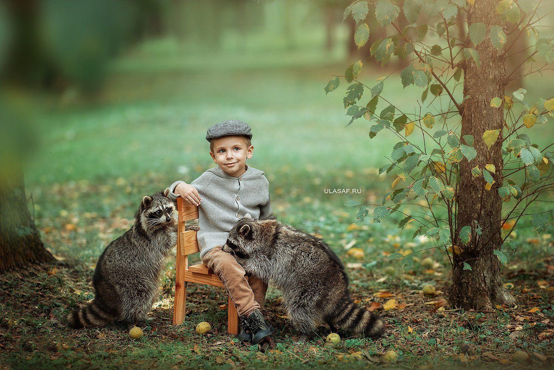 art photo, art, портрет, осень, autumn, ребенок, прогулка, мальчик, boy, животное, енот, raccoon, радость, малыш, друзья, happy, любовь, love, 105mm, kid, children, beautiful, Юлия Сафо