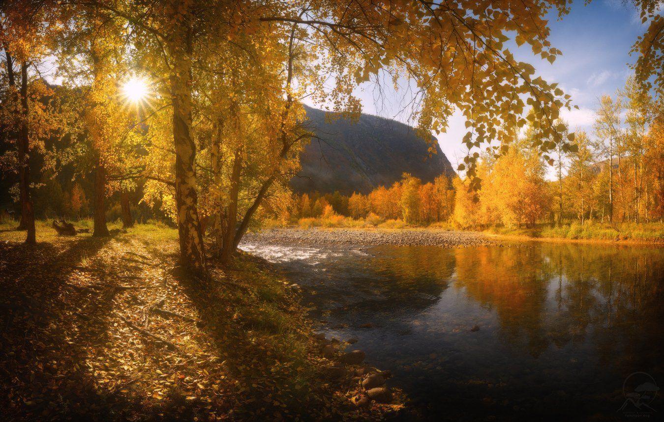 алтай, горы, пейзаж, осень, природа, чулышман, Гордиенко Анатолий