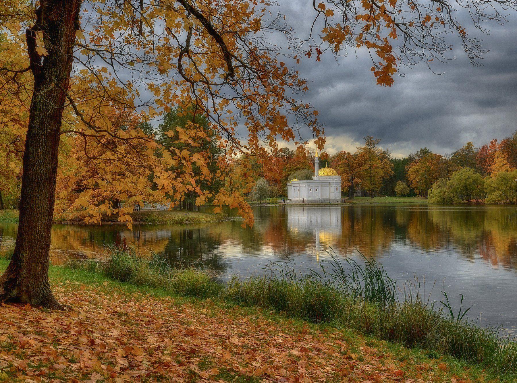 пейзаж,парк,природа,осень,пушкин,царское_село, Наталия К