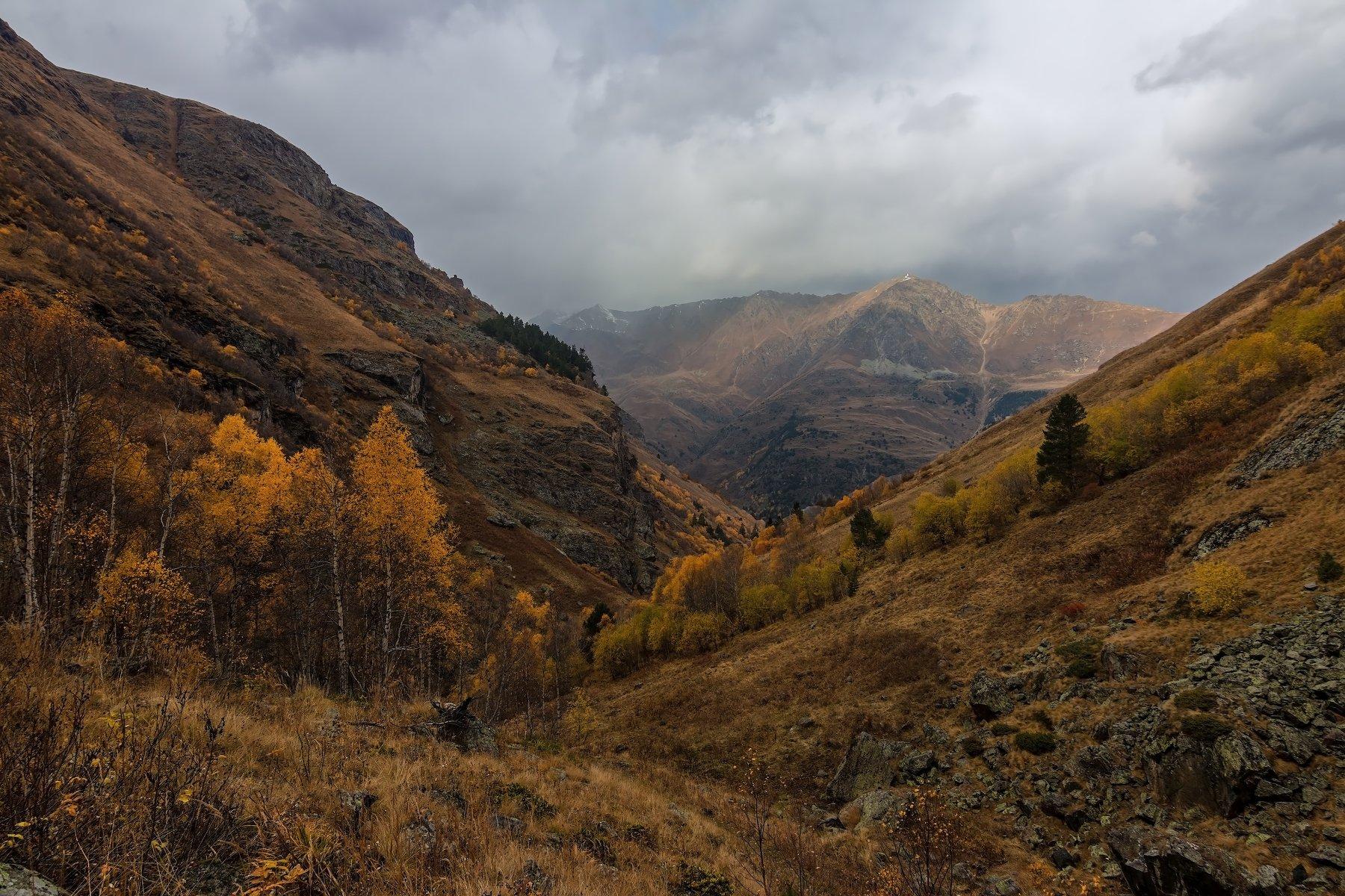 горы,осень,кавказ, Эстелла