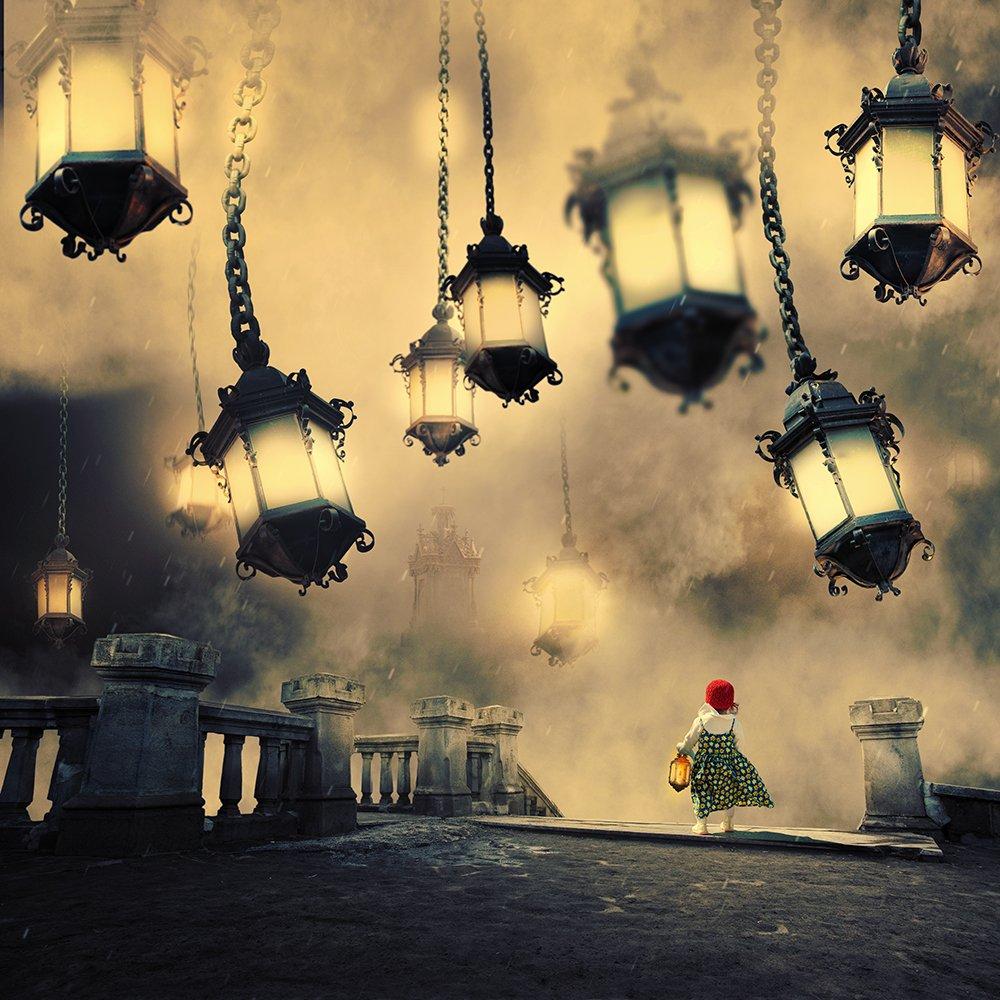 sky, reflection, bird, light, clouds, ground, manipulation, elephant, mounting, wheel, bag, feather, psd, spinner, tutorials, light, stairs, girl, pole, ball, Caras Ionut