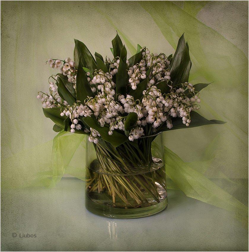 foto liubos, натюрморт, Любовь Селиванова