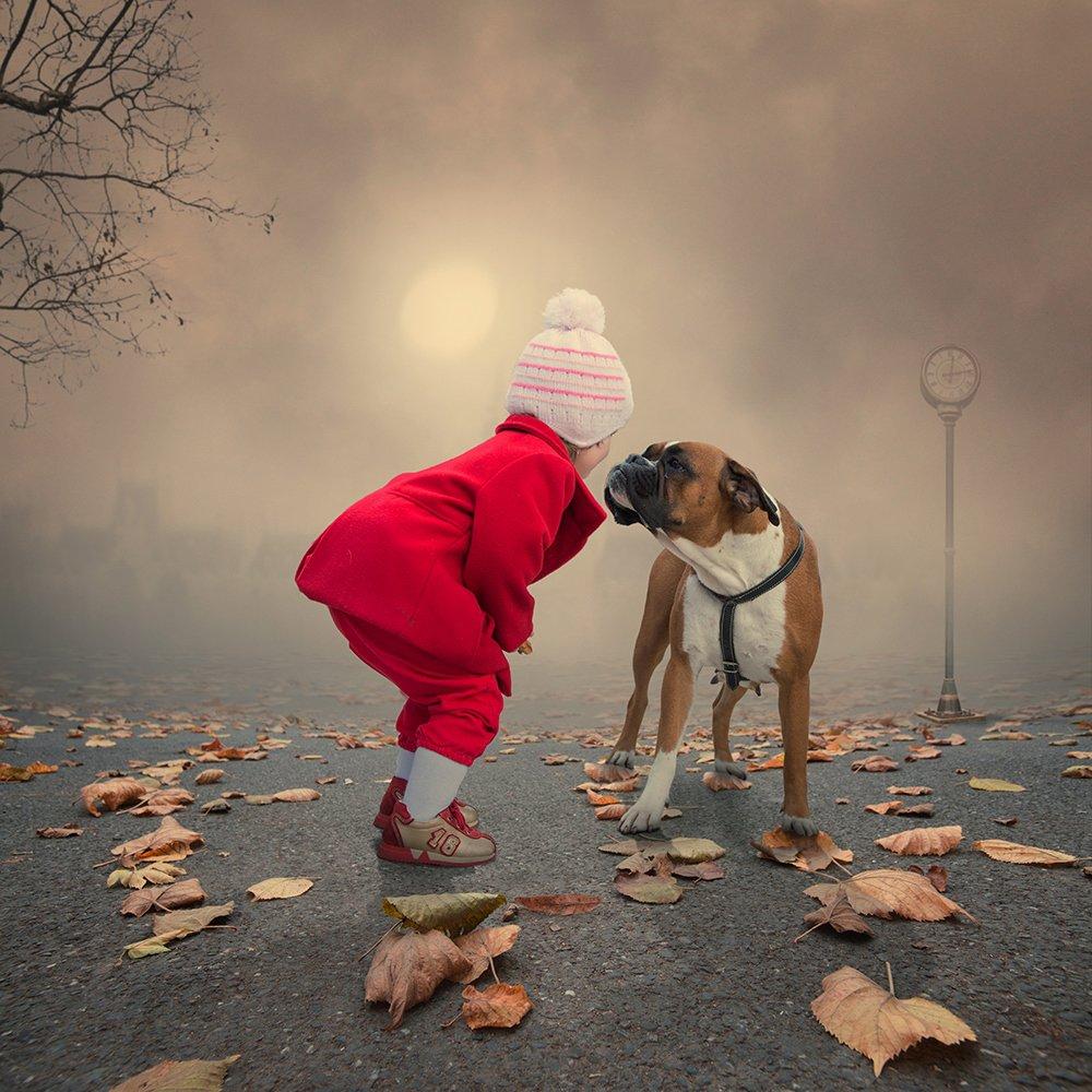 dog, tree, light, clock, face,  ioana, iris, joy, legs, light, manipulation, melting, photoshop, psd, reflection, smoke, snow, sun, tutorials, violet, water, Caras Ionut