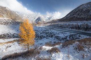 На Алтае много красивых мест, дойти до которых от трассы можно очень легко и быстро. Этот одинокий \