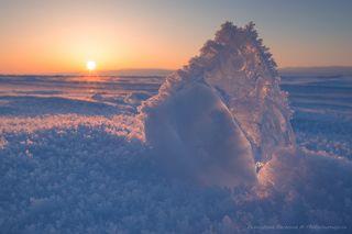 Ледяной росток...