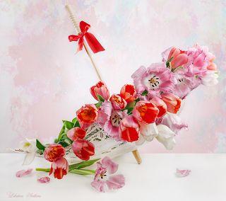 С тюльпанами и зонтиком