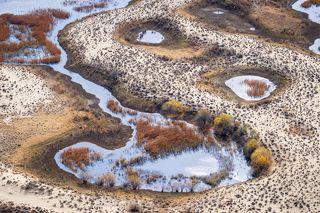 Дельтовые озера реки Или иногда имеют весьма причудливую форму.