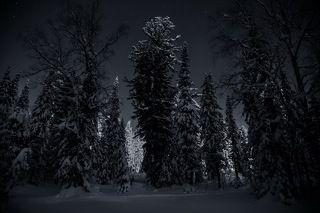 Вою на Луну, стоя по пояс в снегу...! От счастья! :))))