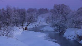 Морозные кружева в сумеречный час перед рассветом