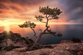 Красота Крыма