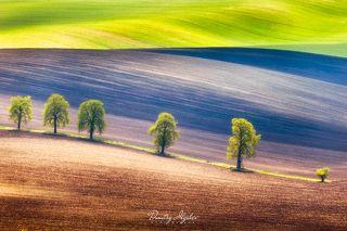 http://ilyshev.photo