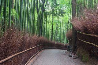 Арашияма, Киото