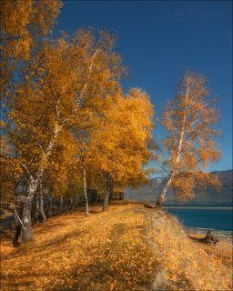 Телецкое озеро, мыс Кырсай. Октябрь 2017