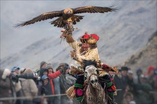 «Торжество победы». Монголия, фестиваль охотников с беркутами / Golden Eagle Festival, октябрь 2017 г. Состязания \