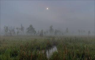 Торфяники с утренней луной