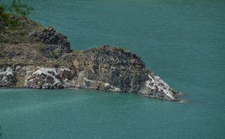 На Былымском озере много окаменевших доисторических животных - это например гигантская утка;)