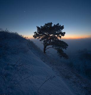 сумерки спускались на заснеженные склоны холмов .. холодный туман смягчил отблески заката и все вокруг погрузилось в синеву ..