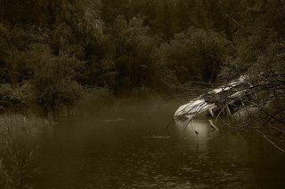 Проехав несколько километров уже почти по совсем заросшей дороге,  мы пересекаем горную речку Аркагала , моросит мелкий уже затянувшийся на несколько дней дождик. Наскоро проезжаем в глубь поселка и решаем сделать лагерь на берегу реки.