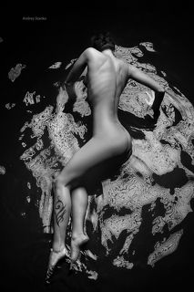The PhotoShoot Awards NUDE 2014 - Merit in Conceptual Category