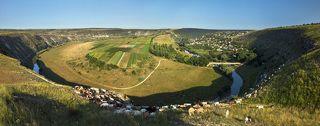 Вид с противоположного, восточного склона, над селом Требужень, и стадо коз идущее по краю обрыва.