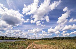 Дорога, дерево, небо.