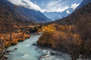 С видом на Белуху