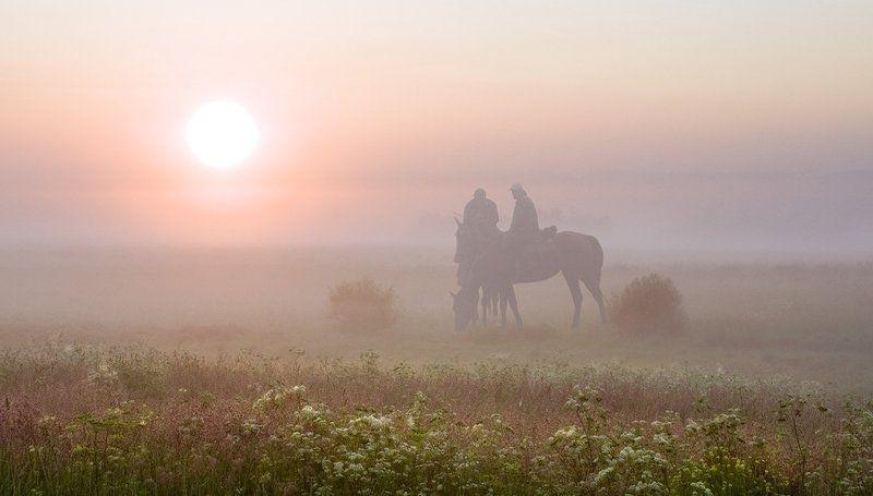 кони, рассвет лошади табун Утро табунщика или песня старого извозчика свалившего из столицы в деревню на дачу...photo preview