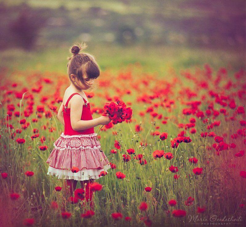 Elly, Field, Flowers, Girl, Poppies, Poppy Poppy Girlphoto preview