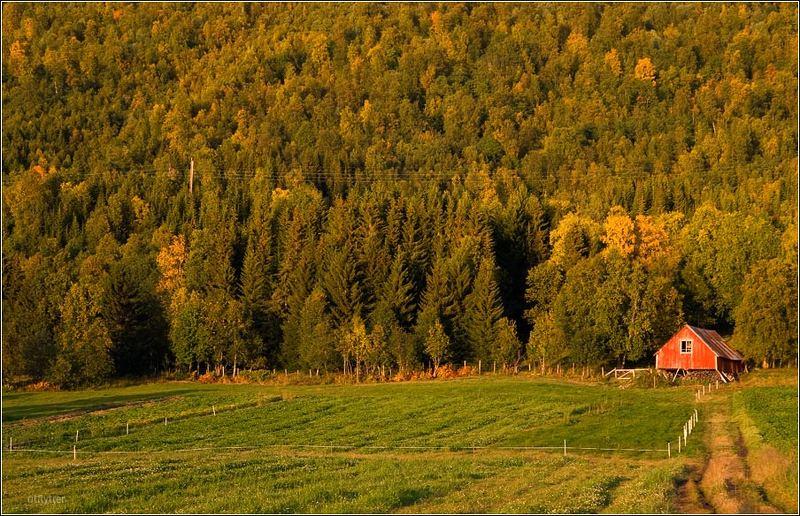 Осенняя пасторальная.photo preview