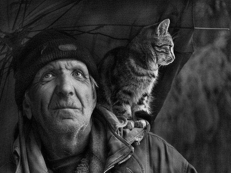 старик, кот, зонт Под одним зонтом.photo preview