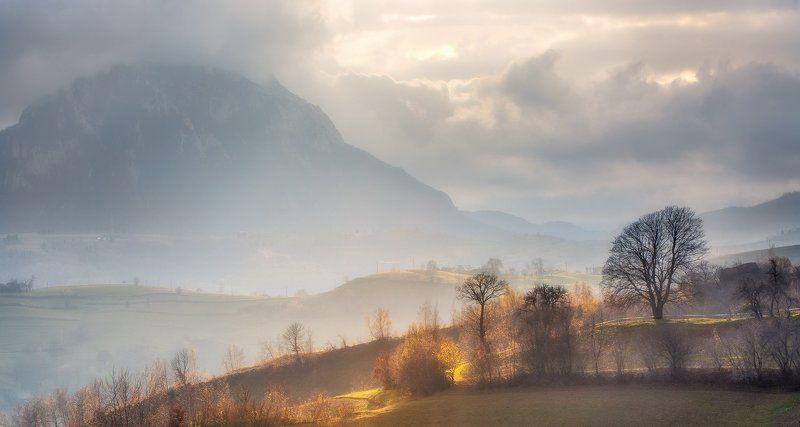 Autumn, Landscape, Nature, Romania, Trees photo preview