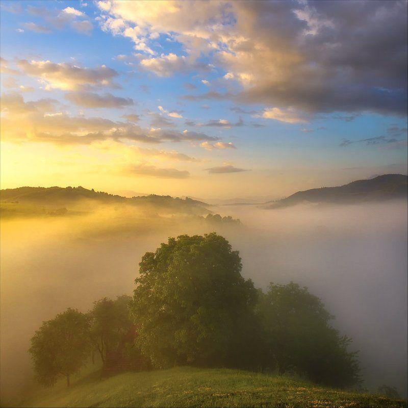 Fog, Hills, Landscape, Nature, Romania, Sunrise photo preview