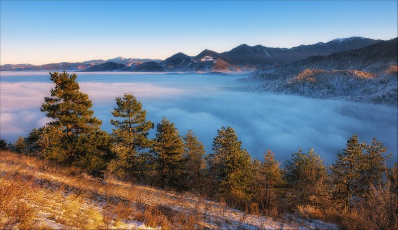 Clouds, Fog, Forest, Lanscape, Sunset, Trees, Winter photo preview
