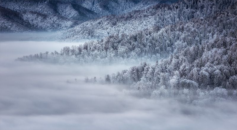 Fog, Landscape, Mountain photo preview