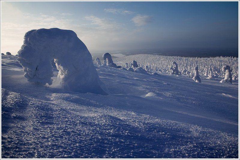 Ползущие путники зимы.photo preview