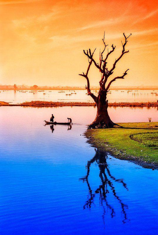 Амарапура, Бирма, Вода, Дерево, Лодка, Мьянма, Озеро, Рыбак Дерево на озере Таунгтхаманphoto preview