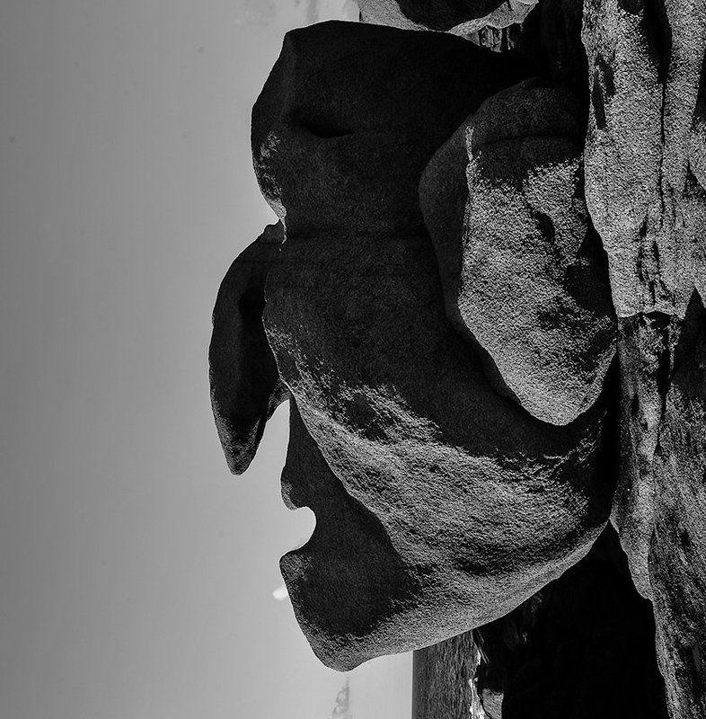 комень, лицо Нечто, удивившее меняphoto preview