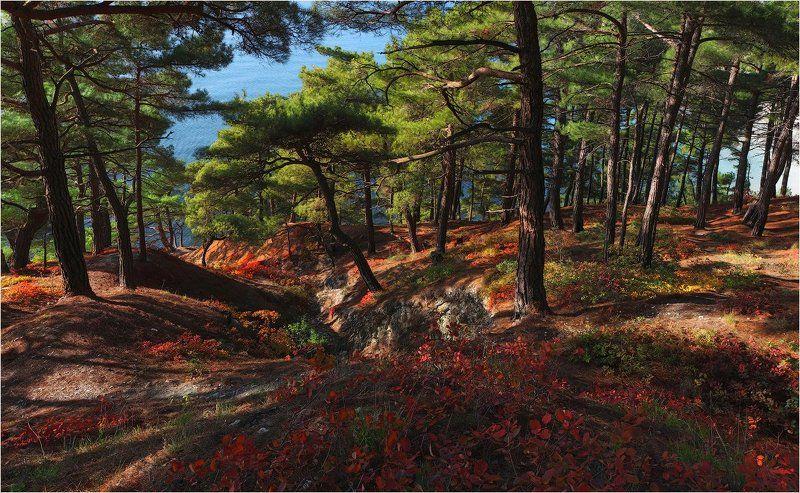 Осень в Голубой безднеphoto preview