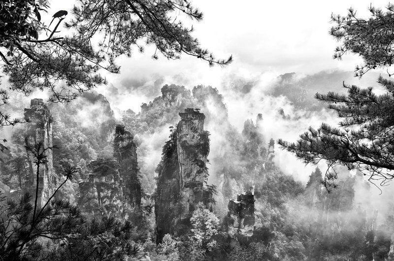 Рисунки Мастера Природы...photo preview