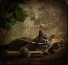 Читая сказки Пушкина