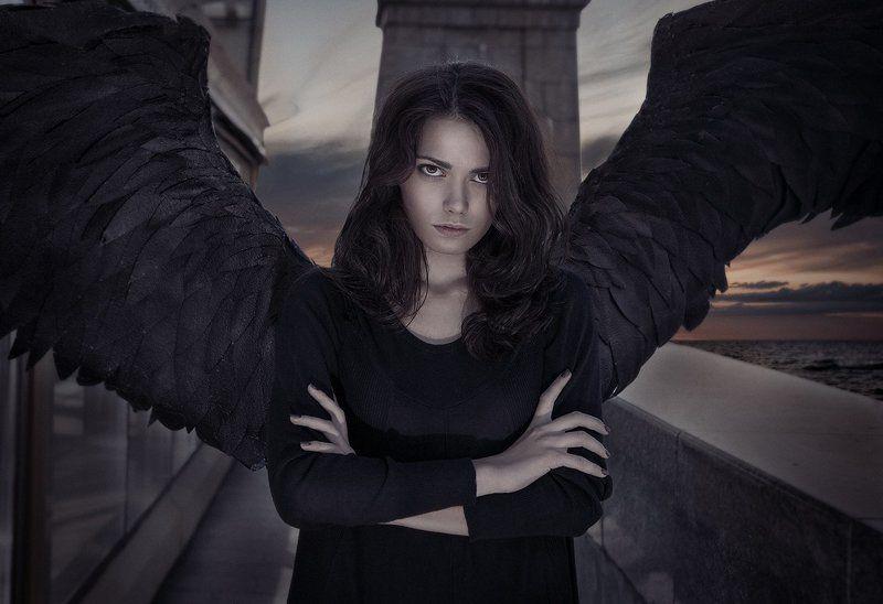 Ночная птица....photo preview