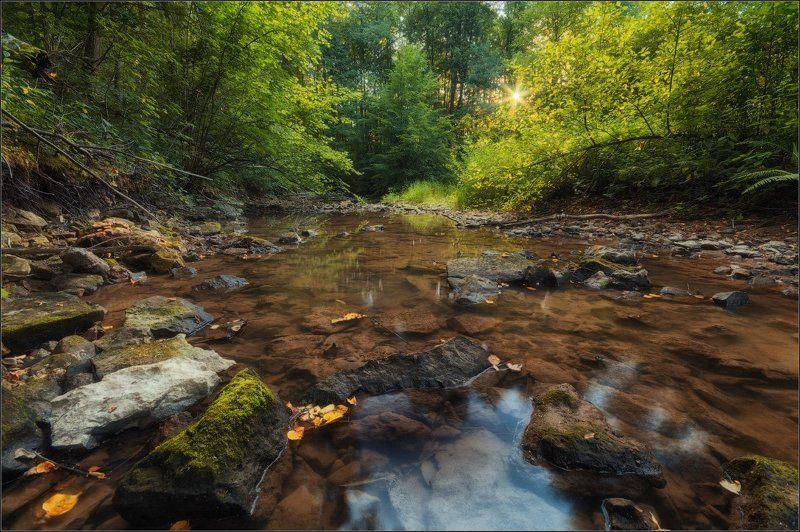 Вечер, Камни, Подмосковье, Река, Солнце Вечер на Бунчихеphoto preview