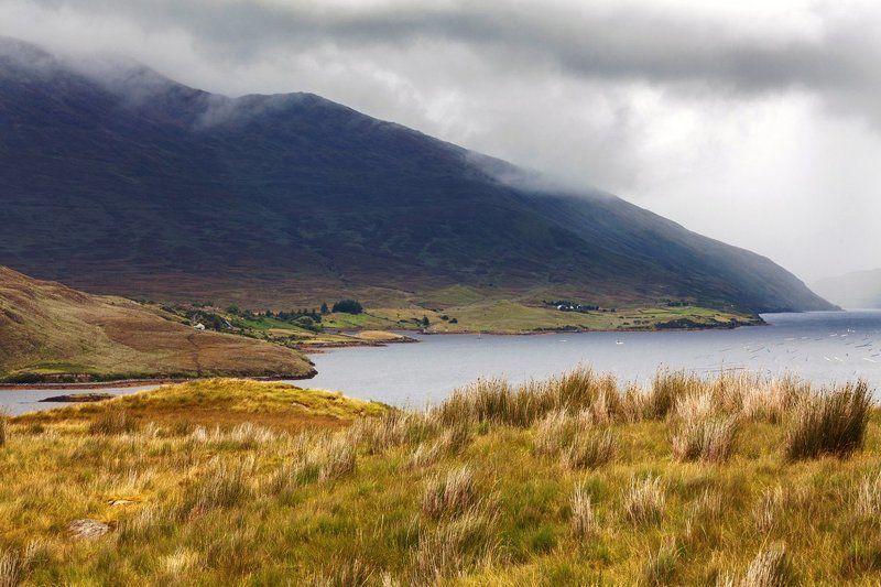 Ирландия, Овцы, Пейзаж, Природа, Торф, Фьорд Killary Fjordphoto preview